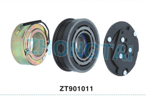 ZT901011